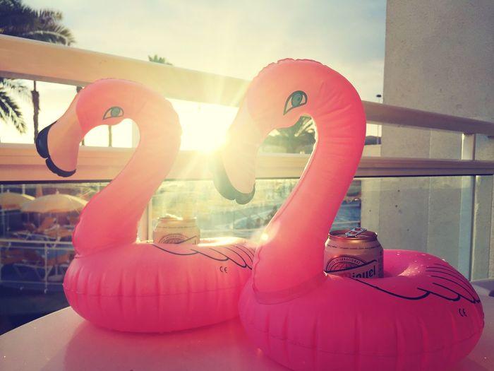 Flamingo Pool Beer San Miguel Inflatable  Sunset