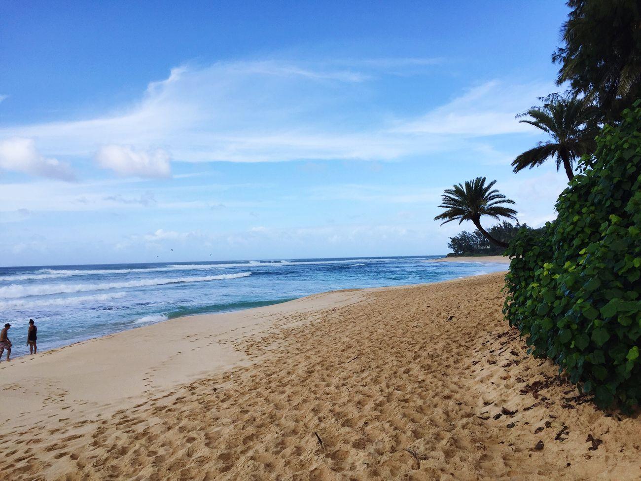 North Shore Hawaii Oahu