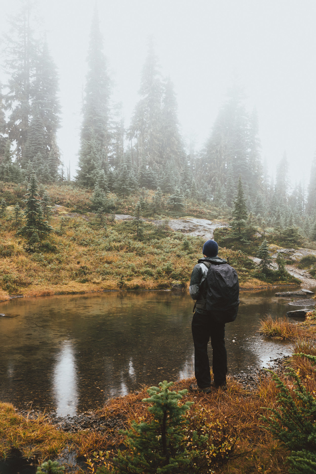 Foggy Alpine Meadows. In My Element. Adventure Alpine Beauty In Nature Day Fog Forest Growth Hiking Leisure Activity Men Nature One Man Only One Person Outdoors Outdoors Photograpghy  People PNW Pond Real People Rear View Scenics Tree Water