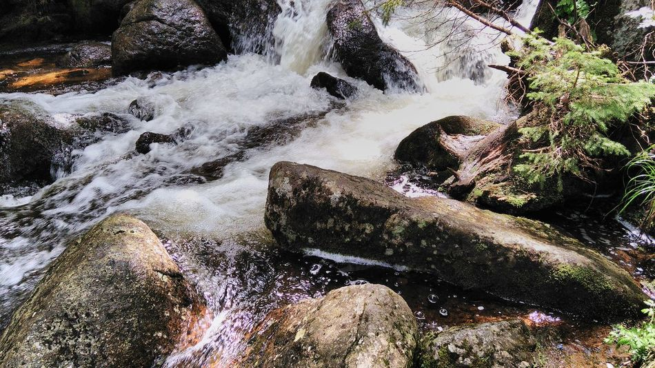 Beauty In Nature Close-up Day Flowing Flowing Water Growth Idyllic Moss Motion Nature No People Non-urban Scene Outdoors Rock Rock - Object Rock Formation Rocks And Water Rocks In The Water Rocks In Water Scenics Tranquil Scene Tranquility Water Water Flow Waterfall