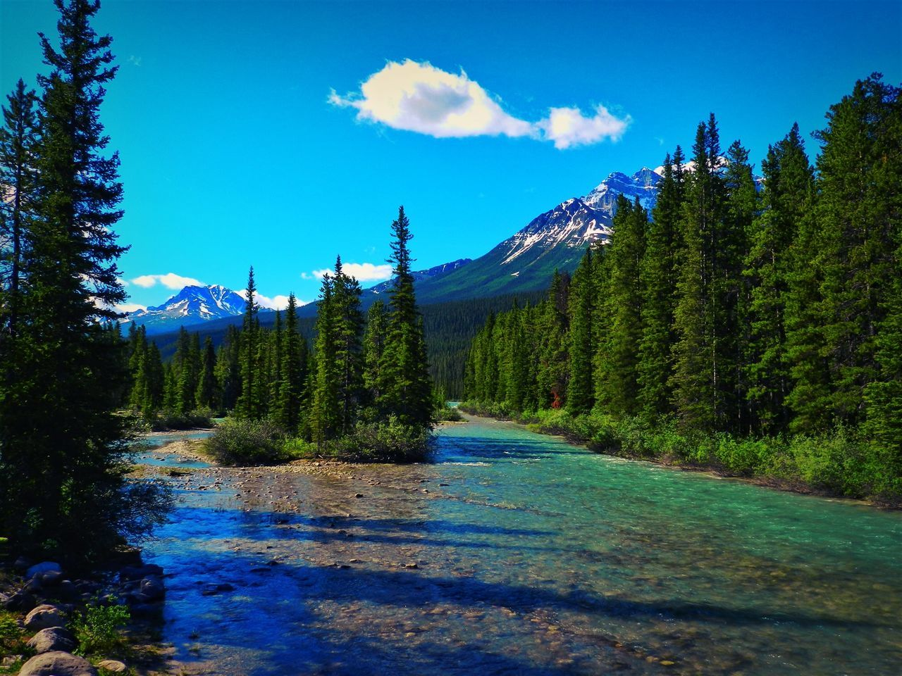 Alberta, Canada Beauty In Nature Blue Canada Day Forest Growth Landscape Mountain Nature No People Outdoors Scenics Sky Tranquil Scene Tranquility Tree