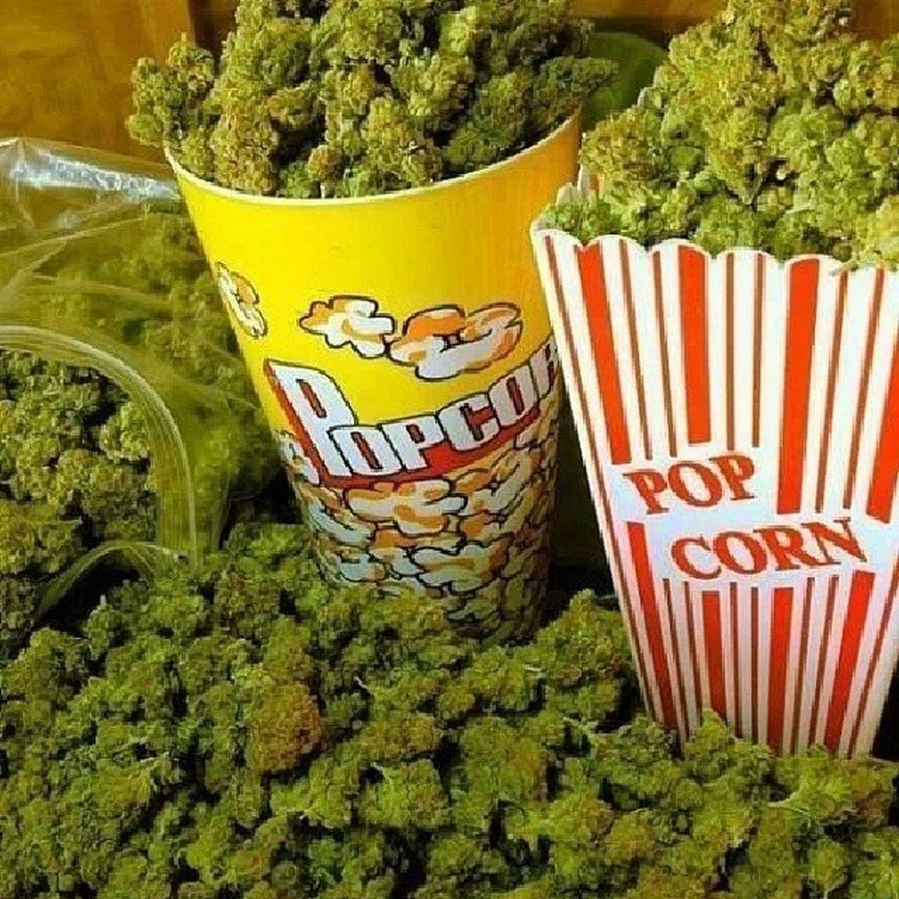Popcorn Canibis MOVIE Sleep edmparty