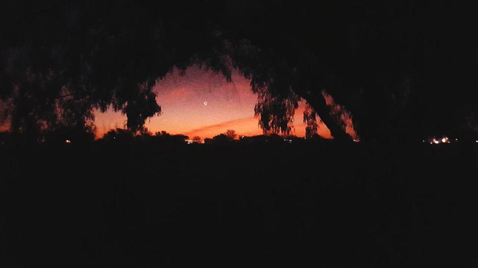 Nighttime Night Photography Africa Eyembestsshots Silhouettes Night Moon Open Edit OpenEdit Nature