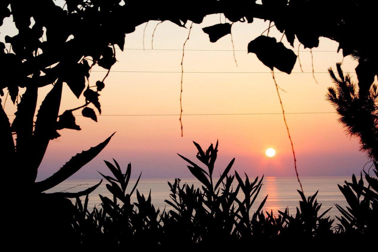 Sunset The Purist (no Edit, No Filter) Sunset #sun #clouds #skylovers #sky #nature #beautifulinnature #naturalbeauty #photography #landscape 25 Days Of Summer