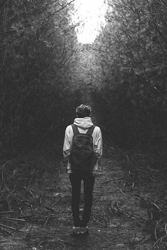 Solitario Solitaire Vida Bosque Depresión Arboles Black And White