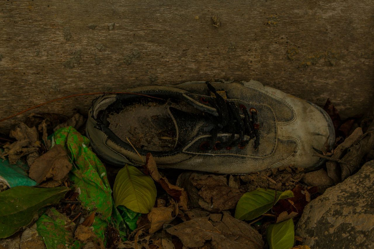 Day Old Shoes Leaves🌿 Leaves 🍁 Nature January Winter Outdoor Photography Canon700D Turkey Canonphotography Coldday Beauty In Nature No People Object
