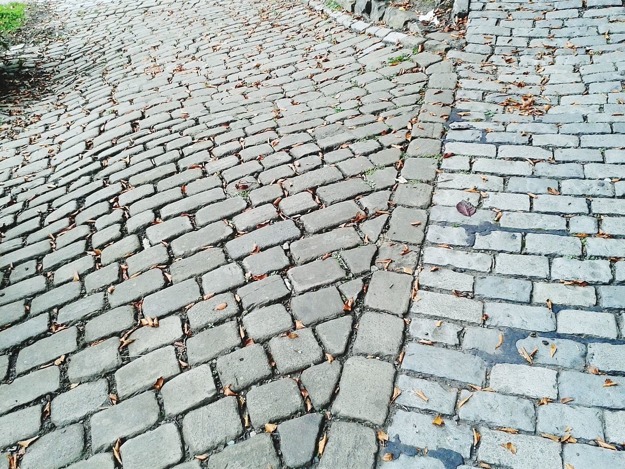 Path Park Cobblestones Fork In The Road Bricklane Pathways Beautiful Stonework Bank Field Museum Peaceful Place Fallbeauty
