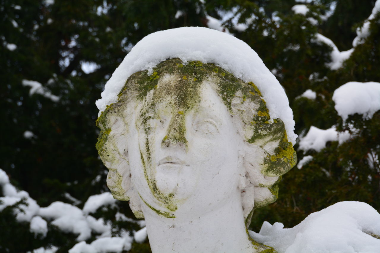 Close-Up Of Snow Covered Statue Against Trees