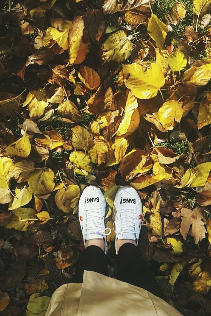Lifestyles Shoe Leaf Low Section Yellow Real People Autumn Standing Indoors  Fall Fall Leaves Fall Beauty BangBang Bangbang🔫🔫 Freedom Istanbul Hello World No People Country Life Hi!