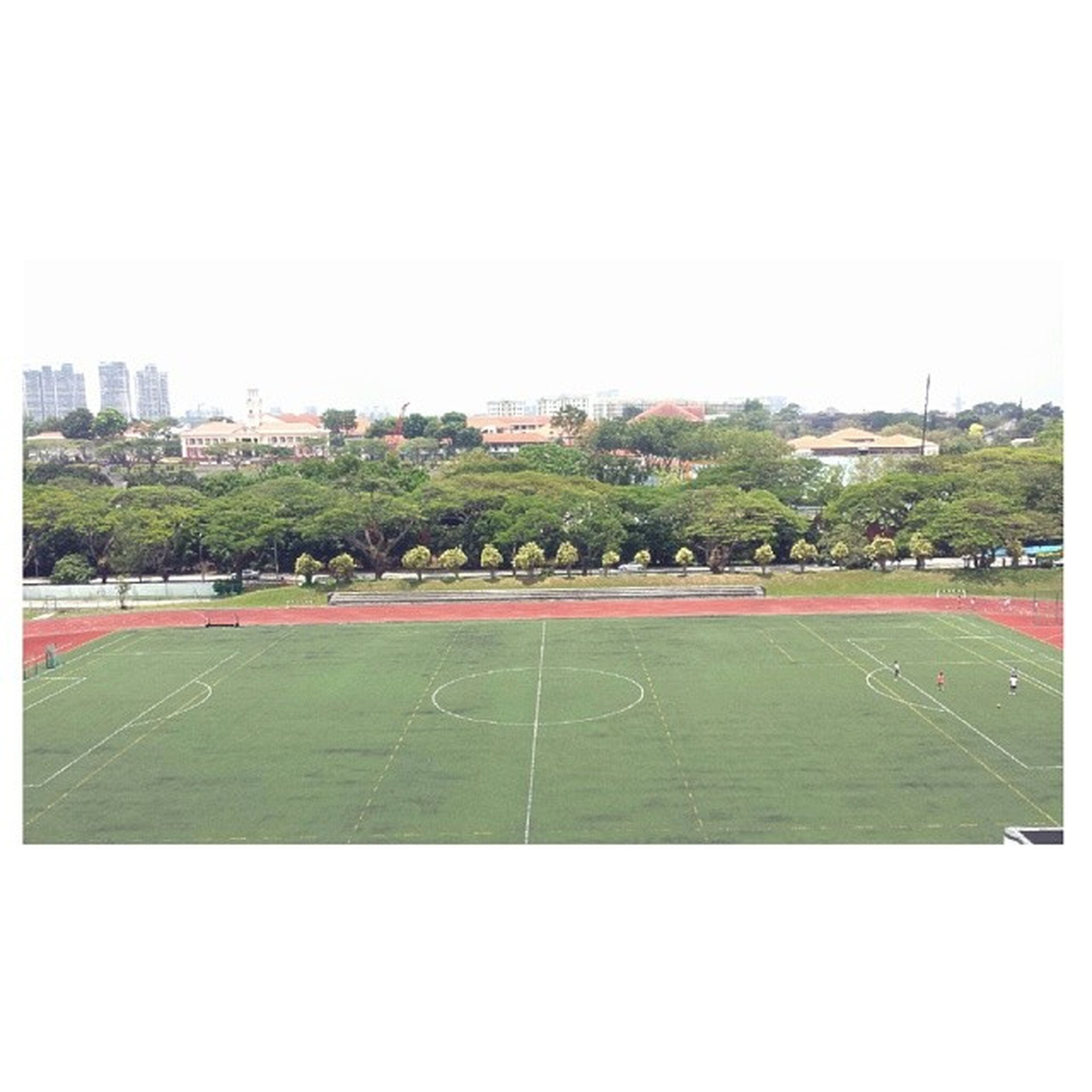 nj school field is fab. . . just a girl trying to find a place in this world