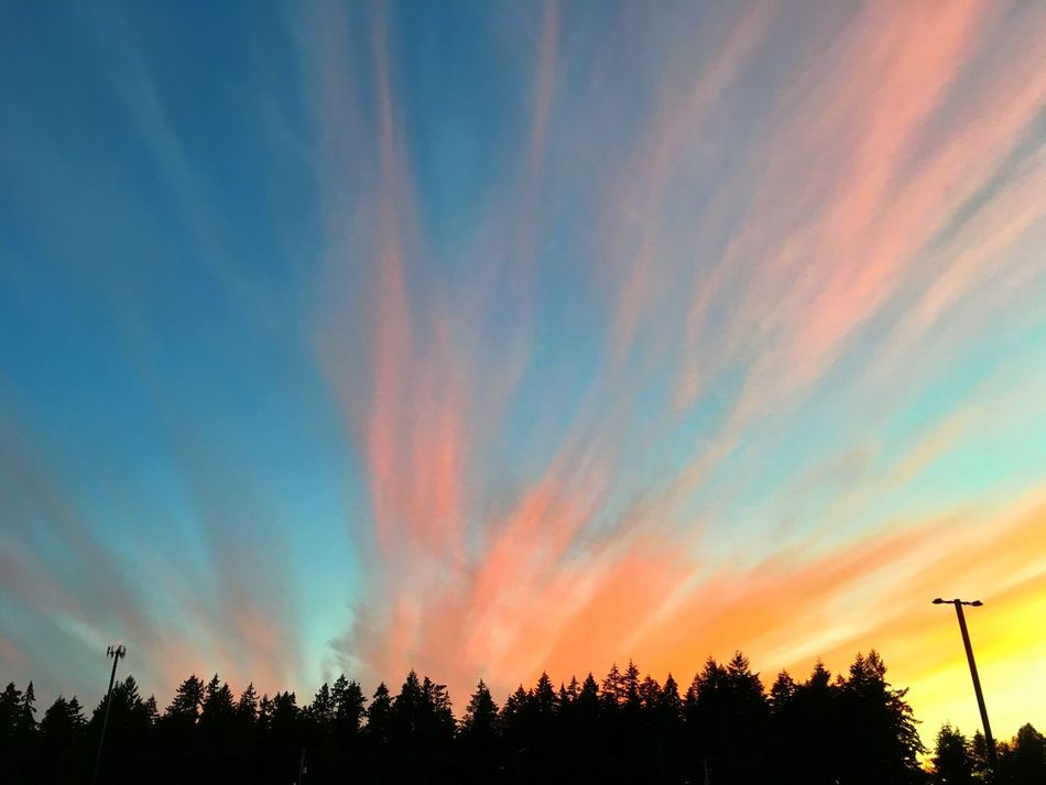 My view. Sunset Orange Clouds Hot Summer Night My Backyard View Sky Clouds Pacific Northwest  Rainbow Sky Eyeem Collection