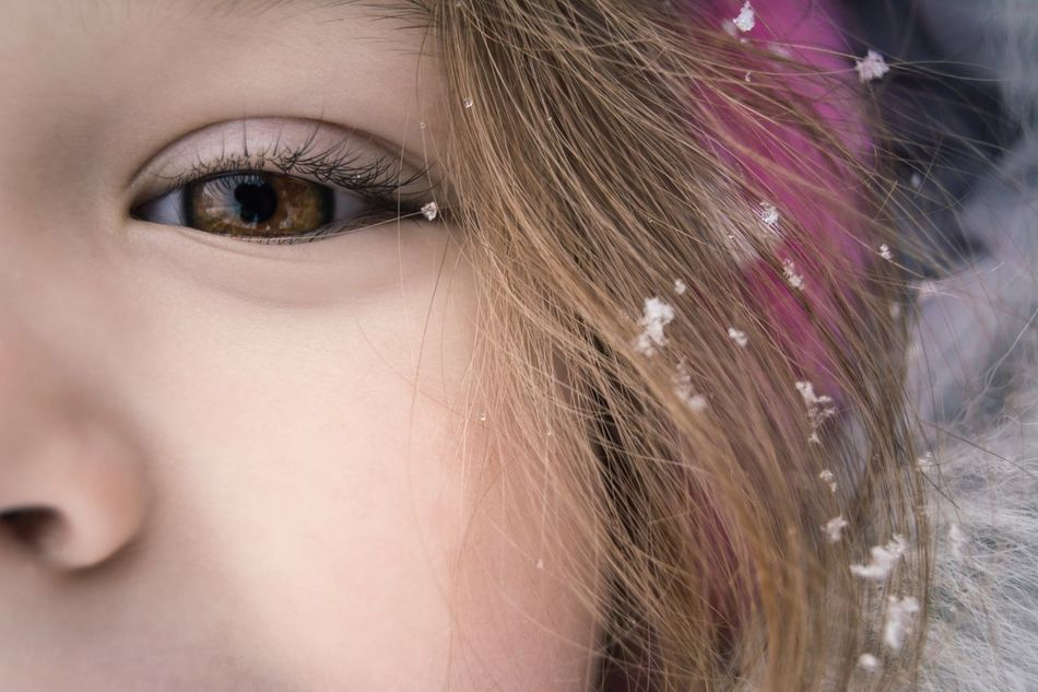 Ice Princesses Snowflakes Eye Beautiful People Portrait Human Eye White Time Winter Portrait From My Point Of View Freshness Brown Eye Beauty Maximum Cuteness By Ivan Maximov Open Edit Eyeem Photo Exceptional Photographs Our Best Pics My Year My View Snowing Hair Women Around The World