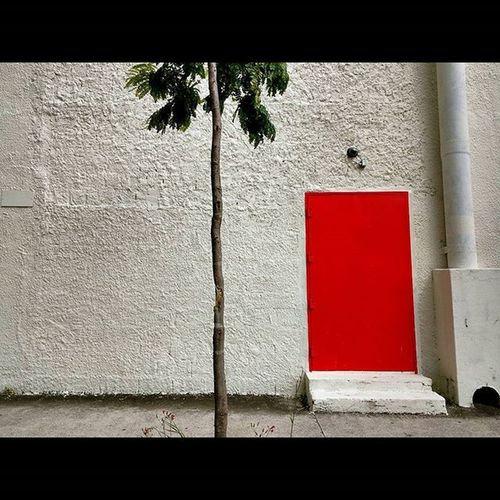 Thebest_windowsdoors Door Shootermag_brasil Chiquenourtemo