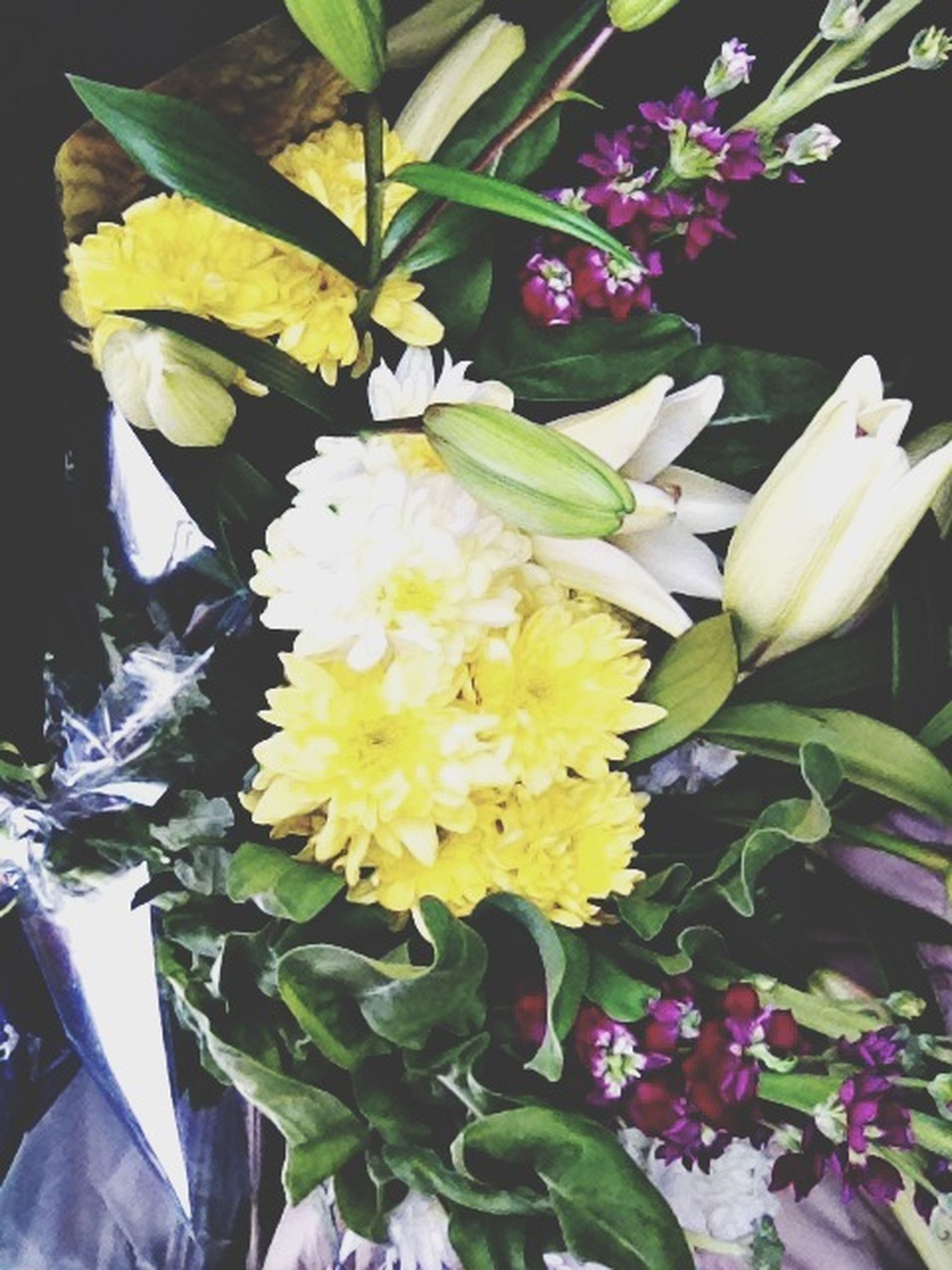 flower, freshness, petal, flower head, fragility, growth, beauty in nature, close-up, plant, leaf, blooming, nature, indoors, yellow, bunch of flowers, high angle view, in bloom, no people, white color, blossom