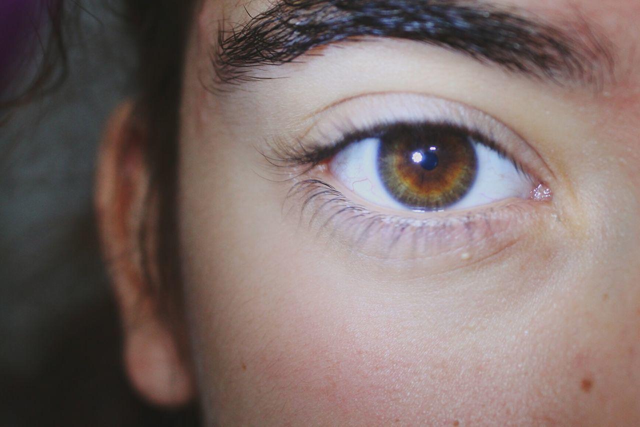 human eye, real people, one person, eyelash, looking at camera, close-up, eyeball, portrait, eyesight, human body part, eyebrow, iris - eye, women, sensory perception, day, outdoors, hazel eyes, people