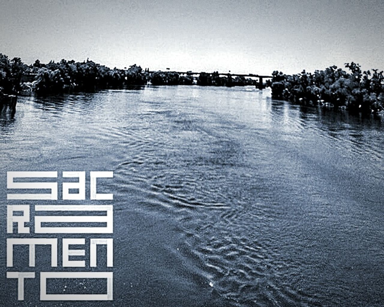 Sacramento, California Taking Photos ❤ Editing Photos This Week On Eyeem My Photography. ❤ Trees And Sky Black And White Photography Eyeem Black & White Nature Photography No People EyeEm Best Edits Beauty In Nature EyeEm Nature Lover Tower Bridge Sacramento Eye4photography  Nature Photo Of The Day Hidden Gems  Sacramento River