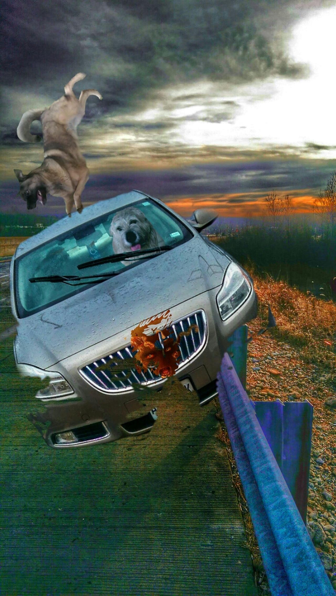 https://youtu.be/LeVEbbheUck The K9GB Teen Wolf Reenactment Wrong Turn Joyride Daredevil My Dogs Are Cooler Than Your Kids Who's Afraid Of The Big, Bad Wolf? Dead Yourself On The Grill Dogs Of Justice