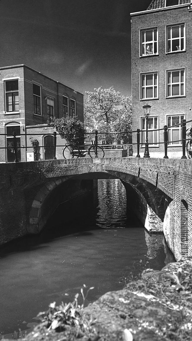 Blackandwhite Black And White Monochrome Light And Shadow The Great Outdoors - 2016 EyeEm Awards Taking Photos Eyemphotography Eeyem Photography Eye4photography  EyeEm Best Shots Urbanphotography EE Love Connection! The Street Photographer - 2016 EyeEm Awards The Architect - 2016 EyeEm Awards Streetphotography Street Photography Street Architecture Building Bridge Canal Bike Dutch Landscape Trees