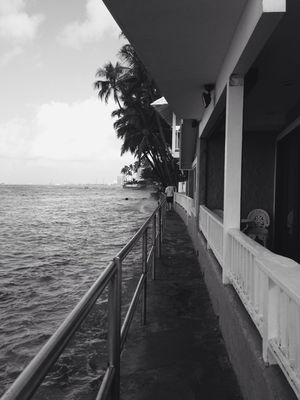 blackandwhite at Hawaii by me_lv