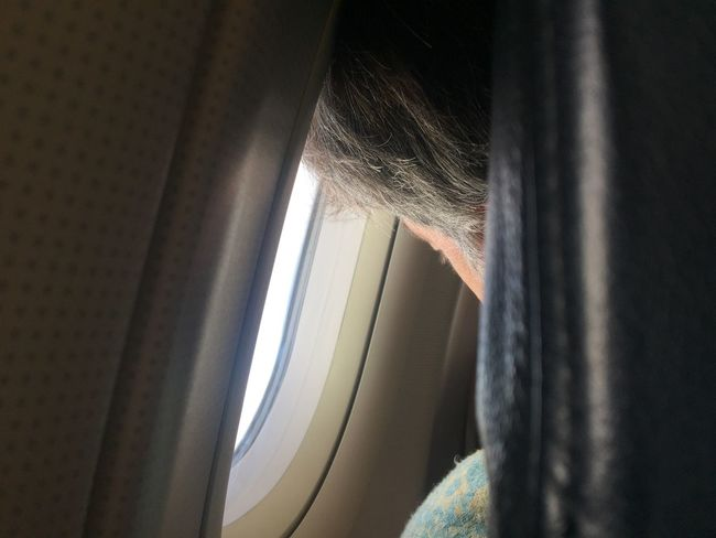 Window Vehicle Interior Transportation Indoors  Mode Of Transport Close-up Curtain Day Journey Looking Through Window No People Airplane Looking