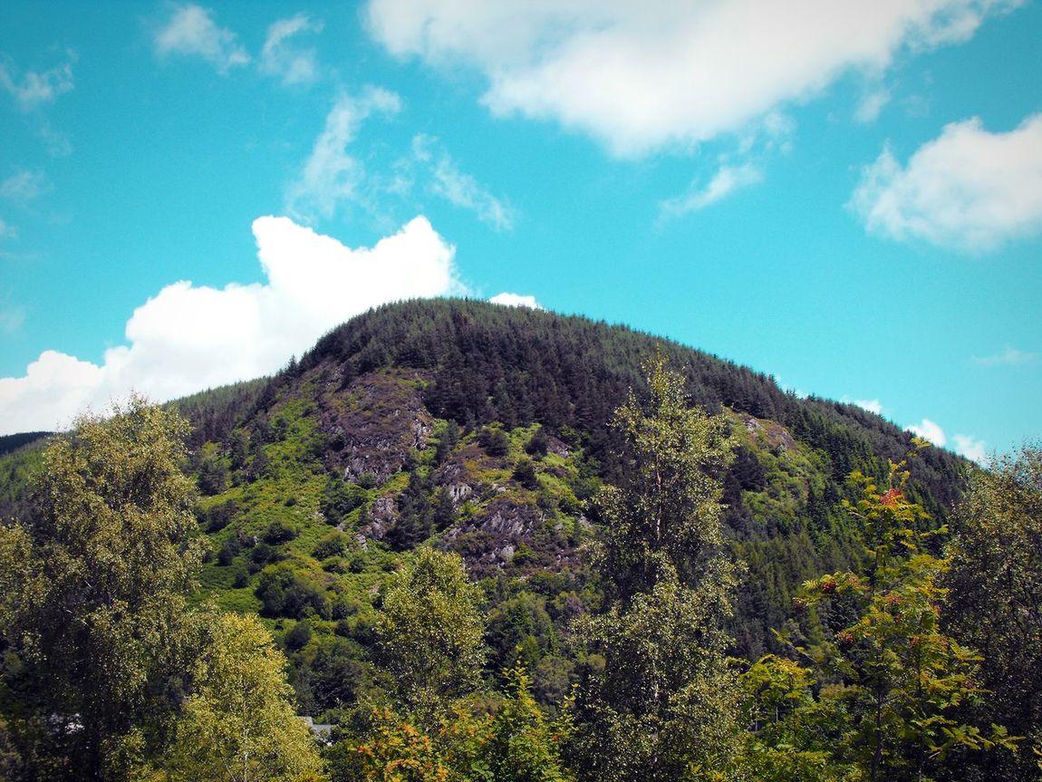 A Green Hill ... Wales Hills Mountains Trees Rocks Clouds холмы зелень