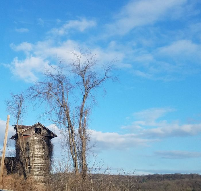 Sky Cloud - Sky Built Structure Architecture No People Blue Tree Bare Tree Building Exterior Outdoors Day Nature The Purist (no Edit, No Filter) Abandoned Structure