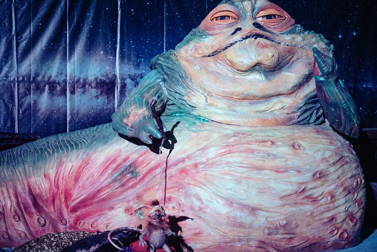 No People Close-up Portrait Animal Themes Indoors  Day Starwars Jabbathehutt