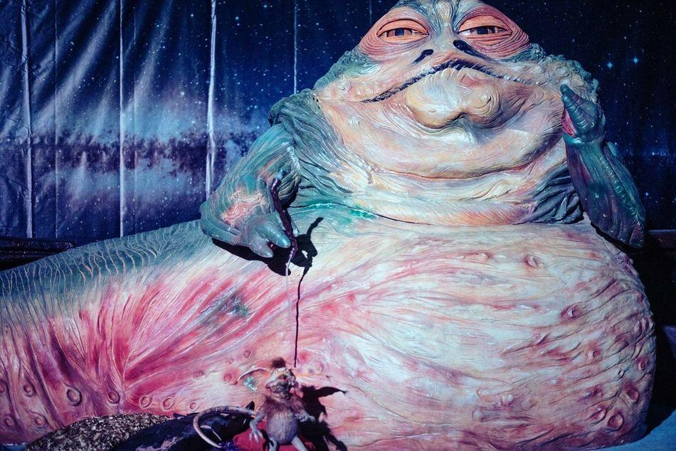 No People Close-up Portrait Animal Themes Indoors  Day Starwars Jabbathehutt