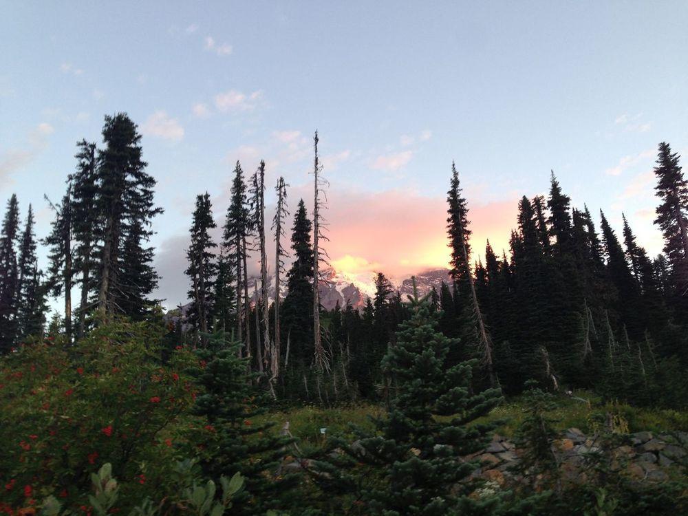I miss those days Mt. Rainier Nofilter