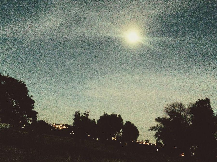 La luna es la única quien lo sabe 🌙