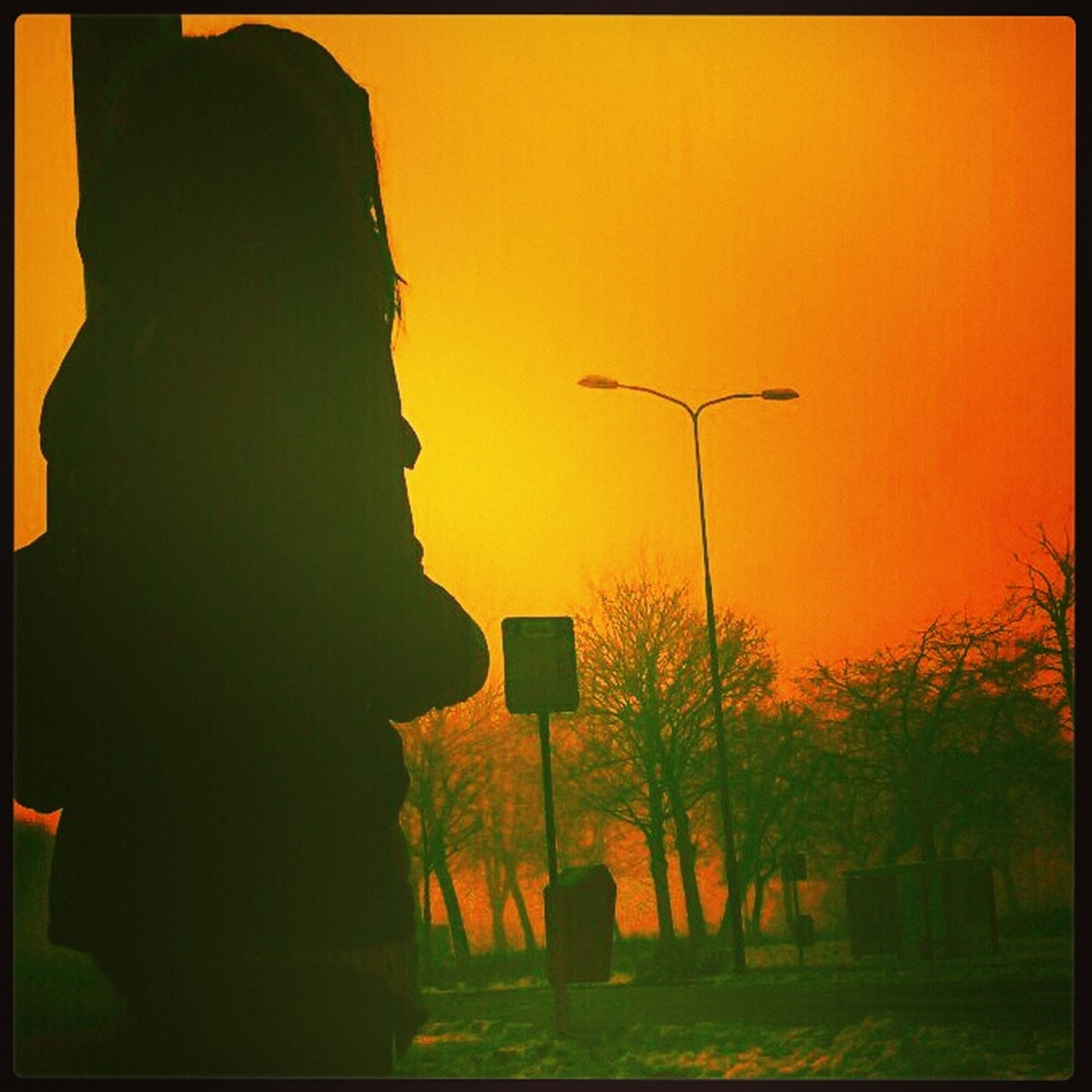 sunset, transfer print, silhouette, tree, auto post production filter, clear sky, sky, tranquility, copy space, tranquil scene, scenics, beauty in nature, nature, built structure, building exterior, orange color, architecture, street light, outdoors, dusk