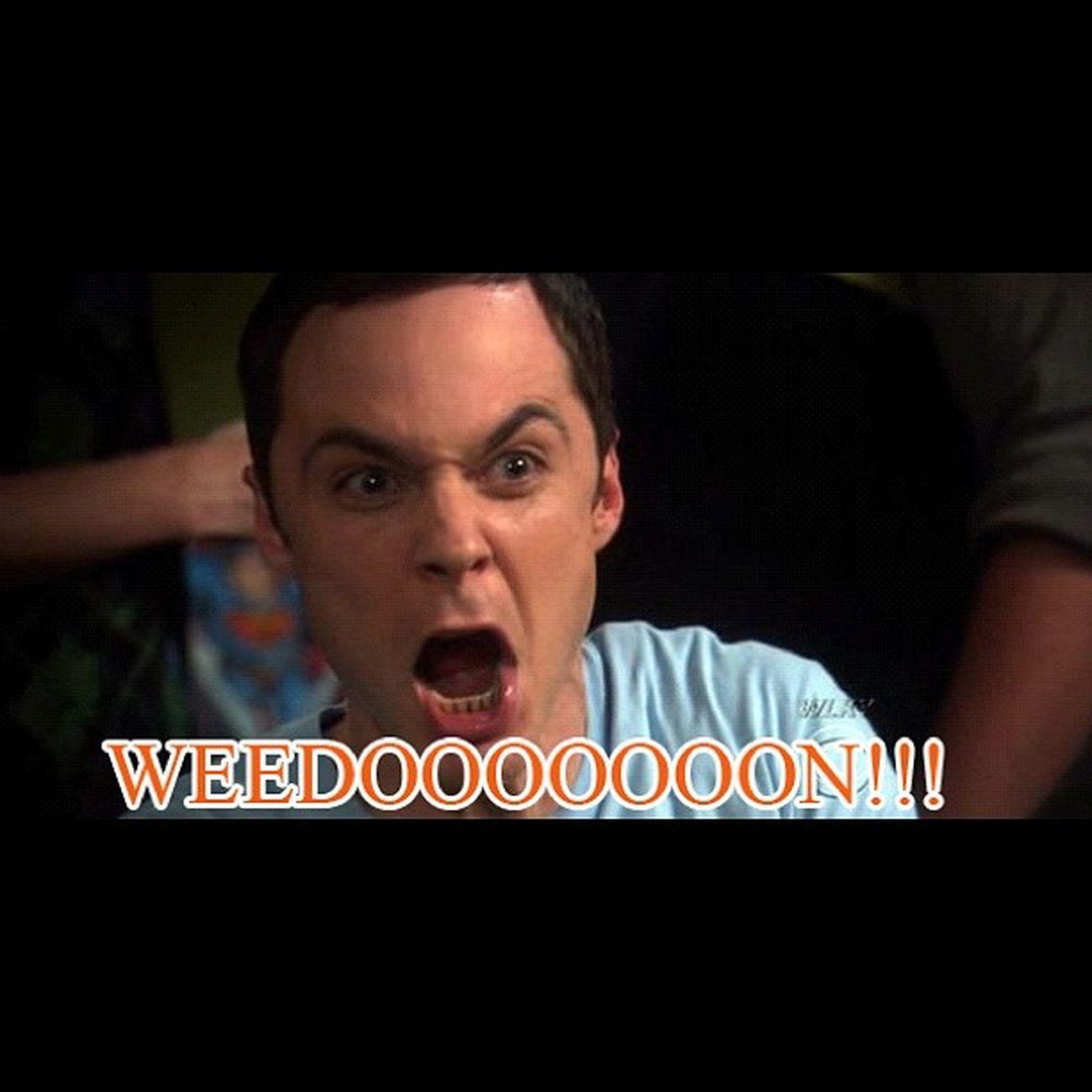 Sheldon's response to Browns drafting Brandonweeden