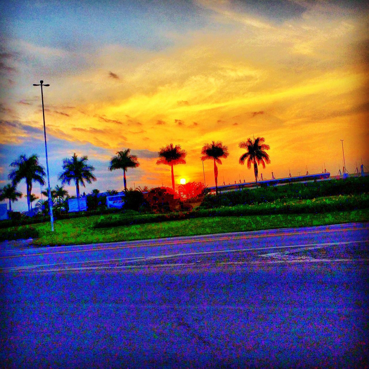 sunset, sky, cloud - sky, scenics, beauty in nature, palm tree, nature, orange color, tranquility, tree, tranquil scene, landscape, outdoors, no people, silhouette, sun, field, road, grass, day