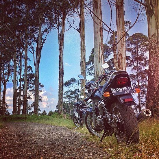 Bike Gsx250 Motorcycle Own_acc ic_wheels iphonesia iphoneonly ikaskus gang_kaskus insta_kaskus aic instasunda baraya_ig instago instagood instagram statigram webstagram photooftheday picoftheday