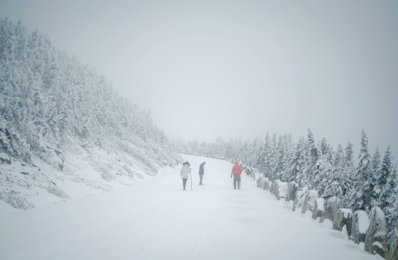 Snow Winter Cold Temperature Snow Winter Cold Temperature Tree Deep Snow Beauty In Nature Landscape Nature Forest Vacations Snowing Friendship People Outdoors Snowflake Fog Warm Clothing Togetherness Day Adult Hike Blizzard