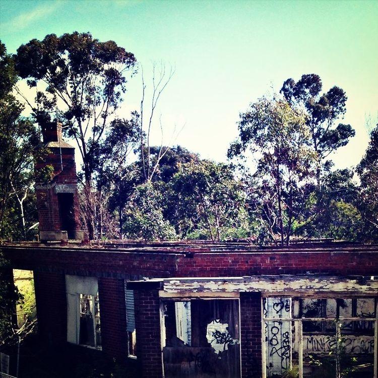Abandon MentalAsylum Beauty Of Decay