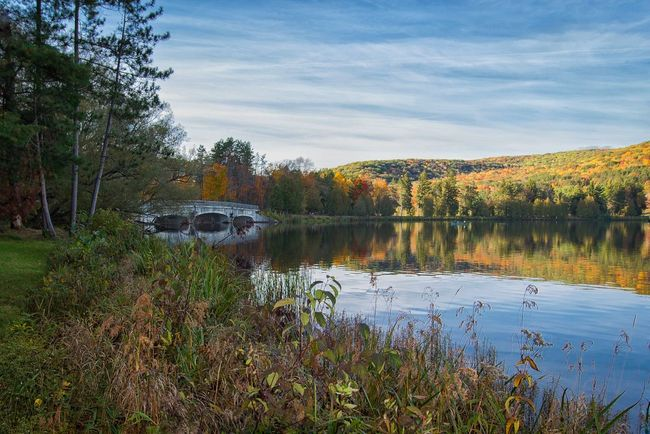 Allegheny State Park Western New York  New York Fall Colors Landscape_Collection Water Reflections Trees Bridge Hiking Huffpostgram Natgeotravel Nature_collection EyeEm Nature Lover Nikon Check This Out