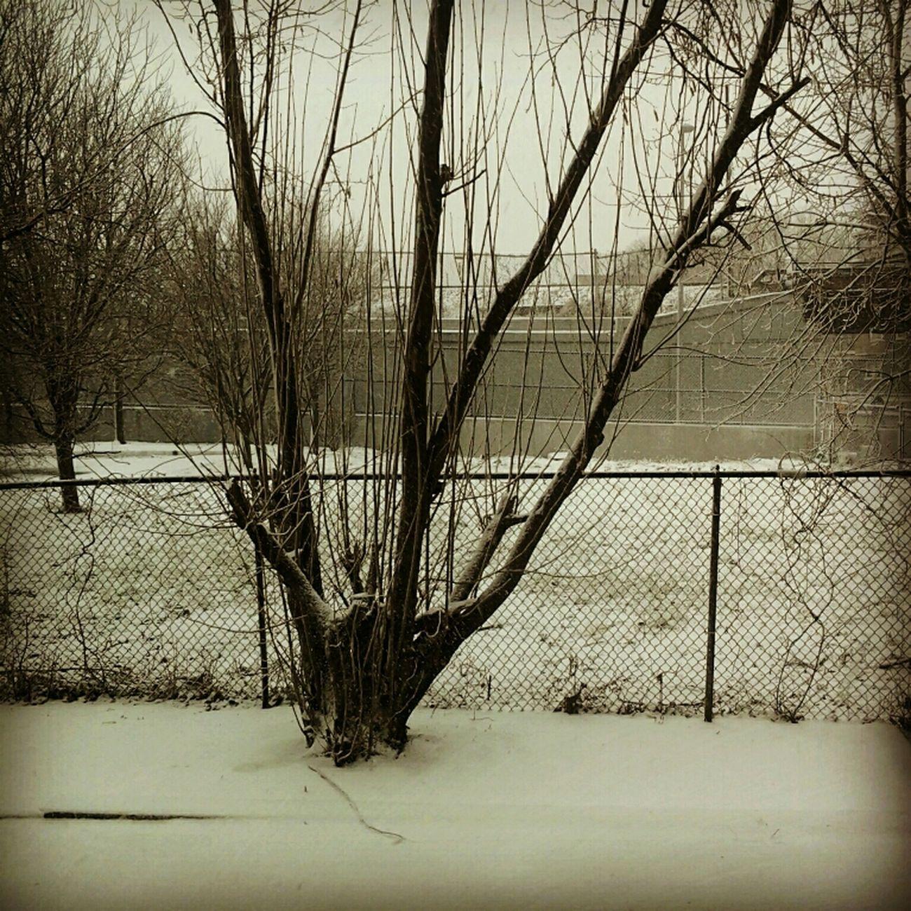 The snow thooo