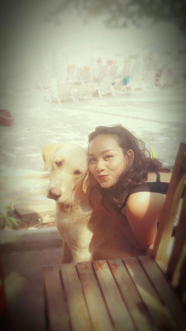 My Rambo...the doggie :) He Is Cute Cute Dog  That's Me On The Beach