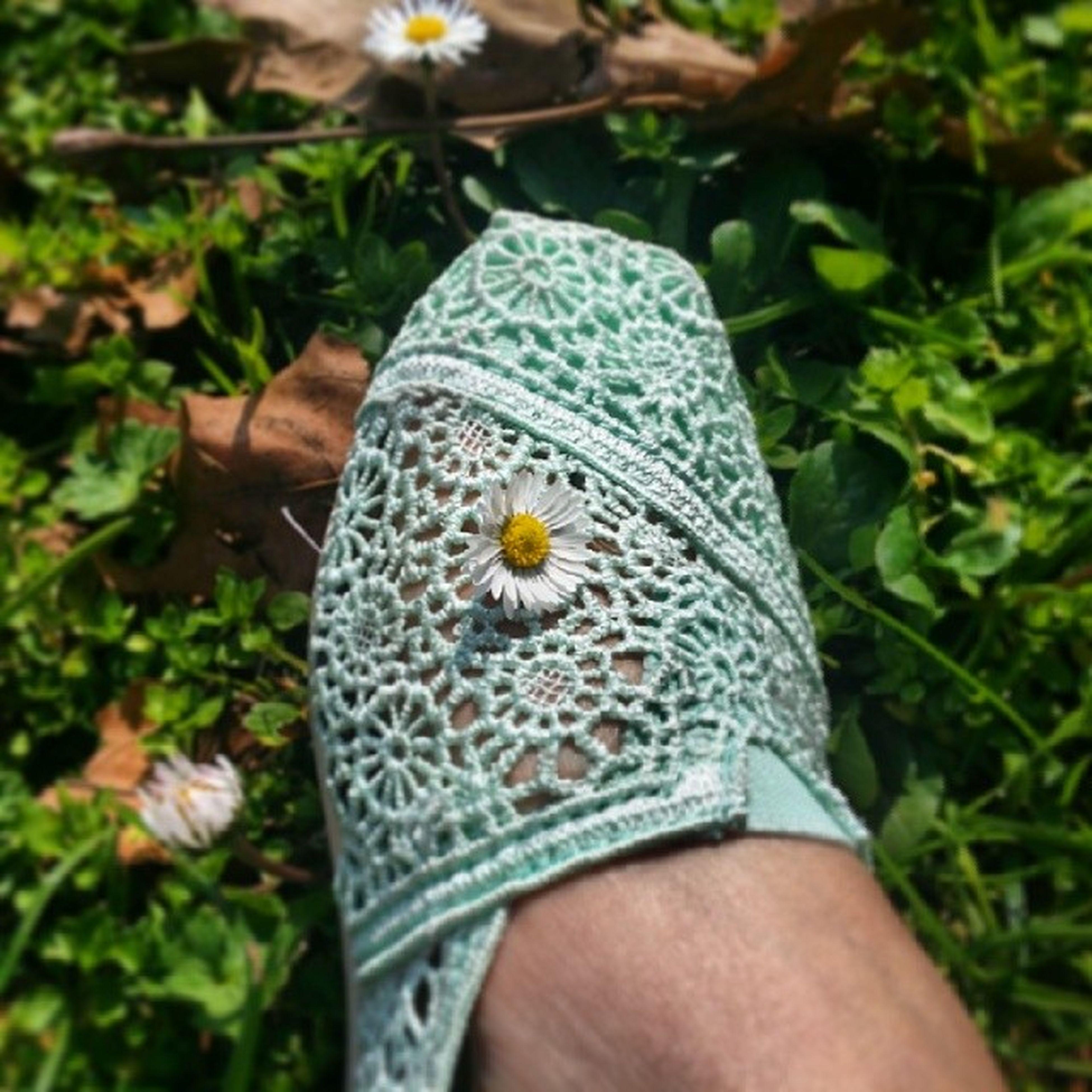 hello spring! Toms Crochette Daisy Sunshine inthepark