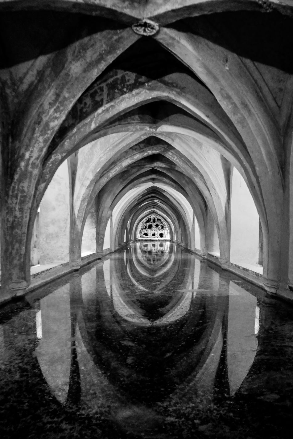 Aljibe Arch Architecture Architecture_collection Archs Black & White Black And White Blackandwhite Bnw Boveda Built Structure Check This Out Day EyeEm Gallery Indoors  No People Reales Alcazares De Sevilla Realesalcazares Tunnel Vision Water Water Reflection Water Reflections Malephotographerofthemonth Welcome To Black The Secret Spaces