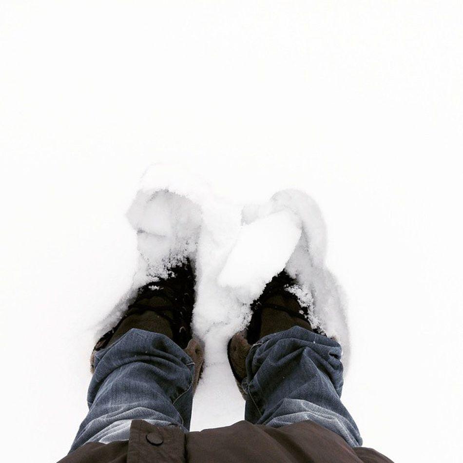 Невыносимая снежность бытия💭👣❄ невыносимаялегкостьбытия невыносимаяснежностьбытия Flexiwoodoffice Flexiwood следы снежнобелый оригинальноефото Uniquephoto Kievwinter Kyivgram Kiev_love Kyiv_love Printl_net Kievgram Kievsnow Kievpics Kyivpics Purewhite Simplewhite Beauty следынаснегу Bluejeans Footsteps Footstepsinthesnow Snowfootsteps
