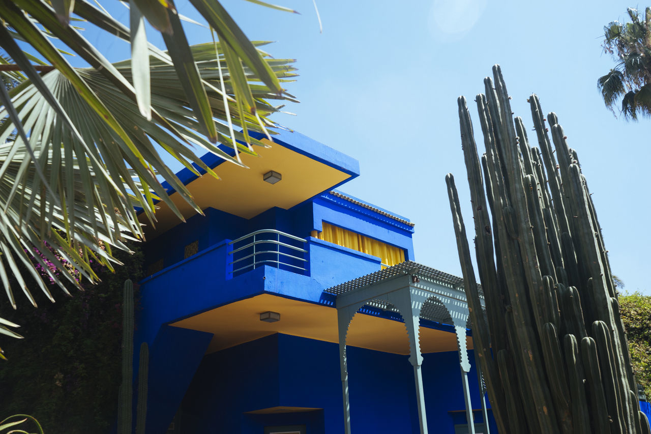 Architecture Blue Built Structure Cactus Day Green Color Growth Low Angle View Majorelle Majorellebleu Multi Colored Nature No People Outdoors Sky Yellow Ysl