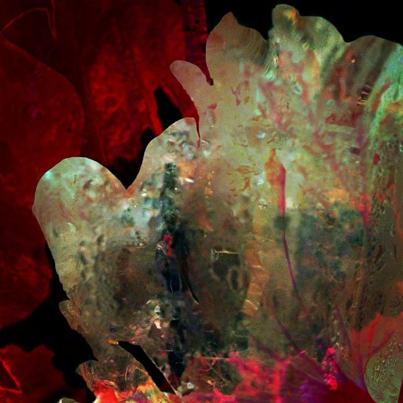 Crystalline Formations (3 of 3) Instaabstract Ig_captures Edit Happycolortrip Abstracto Coloronroids All_shots Dhexpose StayABSTRACT Ace_ Abstractart Deadlydivas Gang_family Ig_one Editjunky Icatching Mobileartistry Femme_elite Instauno Weareinheaven Igsg You_nique_edits Bd Mi55flowerz Abstracters_anonymous Abstract_buff Abstractobsession