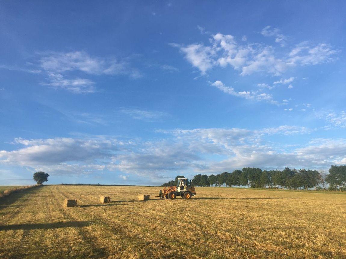 Wheel Loader harvest Straw bales on a field Bluesky Day Farm Farm Life Farmwork Feld Field Harvest Harvesting Landwirtschaft Outdoors Radlader Sky Straw Straw Bales Stroh Strohballen Strohgebündel Strow Summer Wheelloader