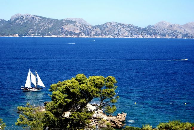 Blue Sea Nautical Vessel Water Travel Sailboat Horizontal Mountain Outdoors Sailing Travel Destinations Landscape Nature Tree Day No People Sky Yachting Clear Sky Tall Ship Mountain Range Beauty Beach Mallorca Relaxation