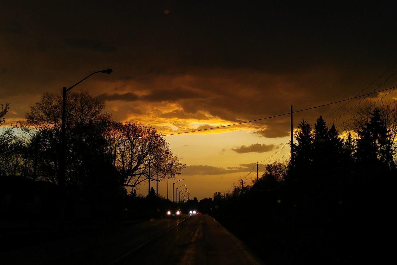 Tree Silhouette Night Sky Road Storm Ottawa Canada