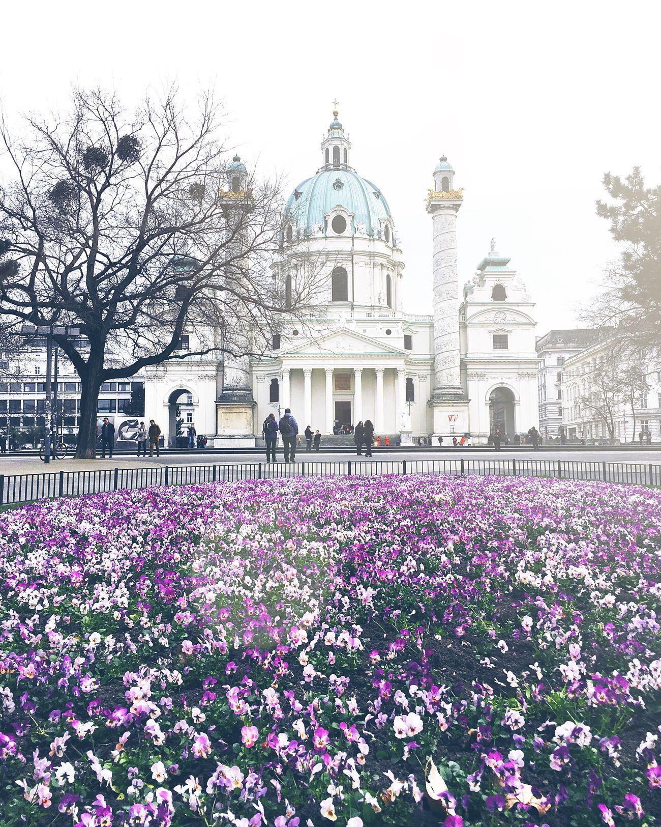 Vienna Urban Spring Fever Wien Spring Springtime Happy Weekend