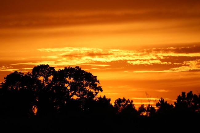 Sunset Dramatic Sky Beauty In Nature Sunset Cloud - Sky Orange Color Nofilter Natural Ribatejo Eyeemphoto Abrantes Portugal Colorful Ribatejoalive Portugal_em_fotos Amar_ribatejo Unlimitedportugal Portugal_de_sonho Portugalnumdia Atmospheric Mood