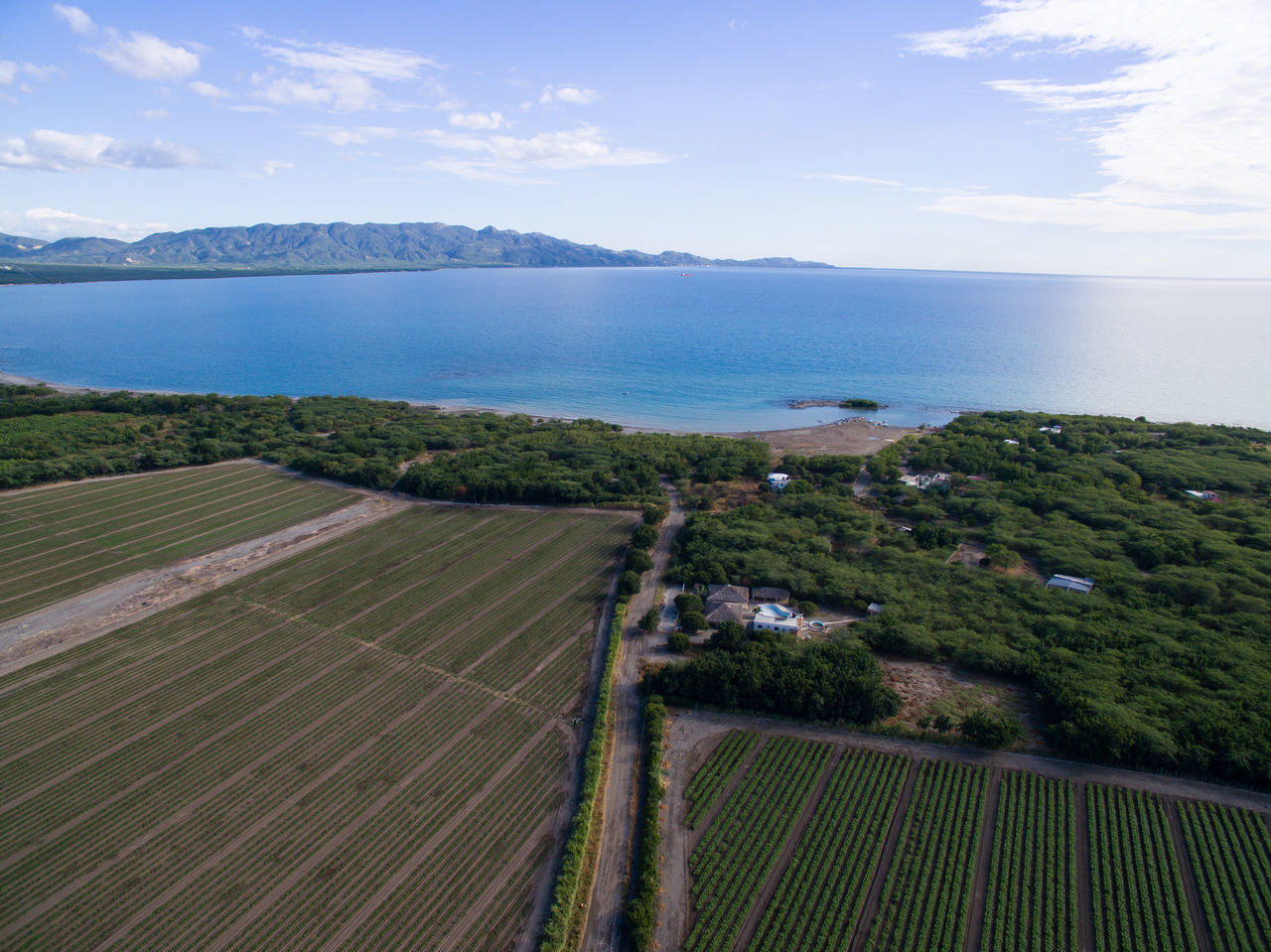 Agriculture Rural Scene Field Growth Scenics Landscape Sky Outdoors Freedom Beachphotography Aerial View Nature Photography Over Water Amazing Scenery Ocean Photography Dronephotography Caribbean Island Caribbean Sea Caribbean Playacaracoles Dominican Republic Santodomingo Beauty In Nature Dronepic